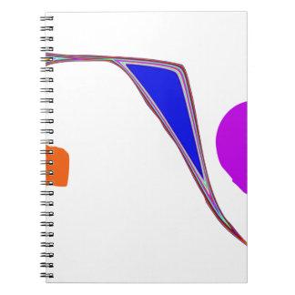 A Roller Coaster Notebook