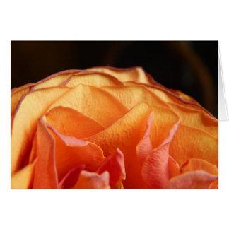 A Rose Card