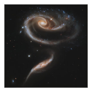 A Rose Made of Galaxies Poster