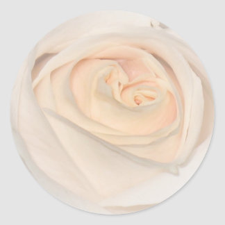 A Rose Round Sticker
