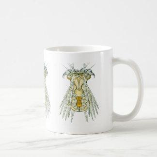 A Rotifer Coffee Mug