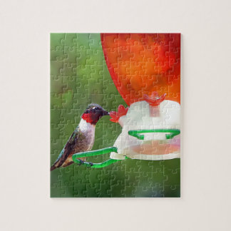 A Ruby Throated Hummingbird Puzzle