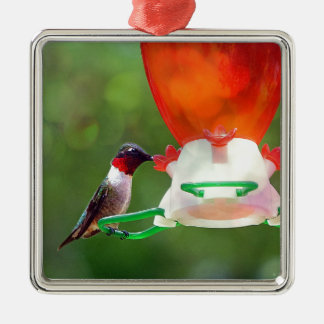 A Ruby Throated Hummingbird Silver-Colored Square Ornament