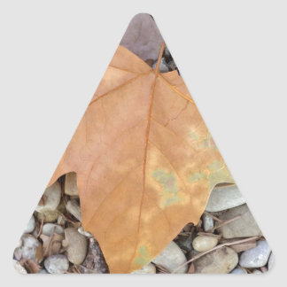 a rusty leaf on pebbles triangle sticker