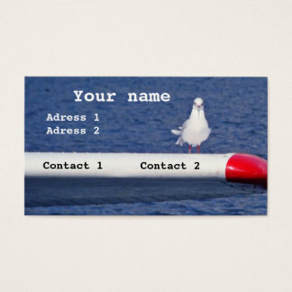 A seagull on an airplane - Business Cards