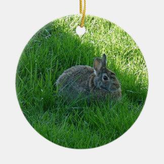 A Shady Bunny Round Ceramic Ornament