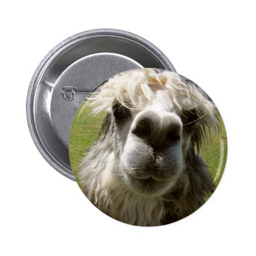 A Shaggy Alpaca Pins