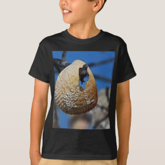 A Shell at the Shore T-Shirt