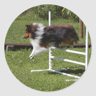 A Sheltie Clears the Bar Classic Round Sticker