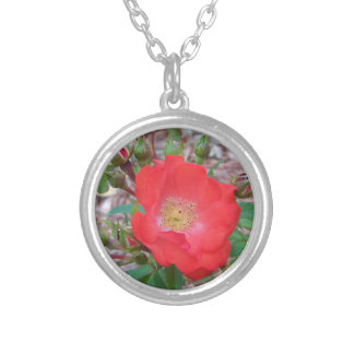 A simple salmon colored open rose silver plated necklace