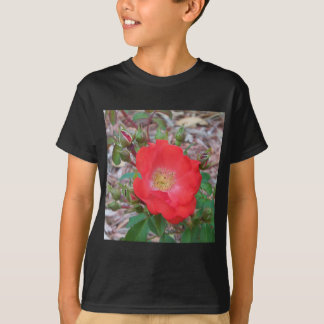 A simple salmon colored open rose T-Shirt