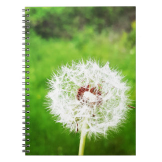 a simple wish spiral notebook