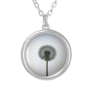 A Single Dandelion Against a White Backdrop Silver Plated Necklace