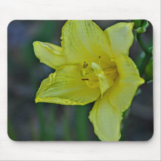 A single Flower Mouse Pad