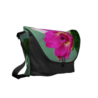 A single pink waterlily in a pond commuter bags