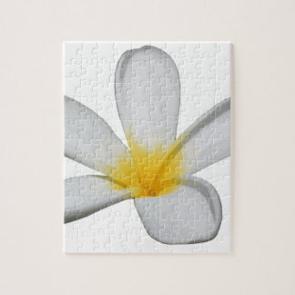 A Single Plumeria Flower Isolated Jigsaw Puzzle