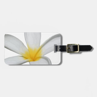 A Single Plumeria Flower Isolated Luggage Tag