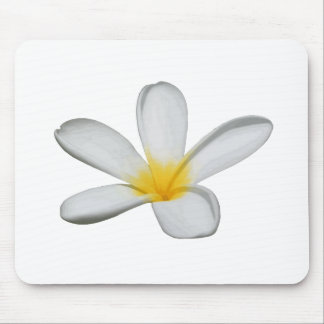 A Single Plumeria Flower Isolated Mouse Pad