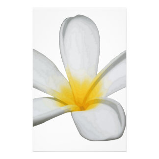 A Single Plumeria Flower Isolated Stationery
