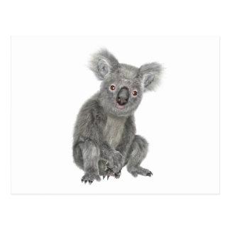 A Sitting Koala Postcard