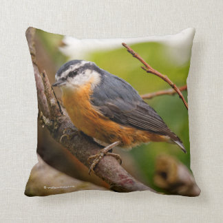 A Skeptical Red-Breasted Nuthatch Throw Pillow