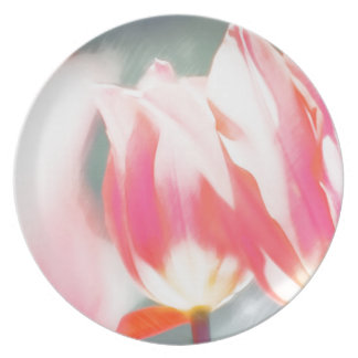A Sketch of Tulipa Duo Plate