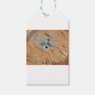 A Skull On Mars? Gift Tags