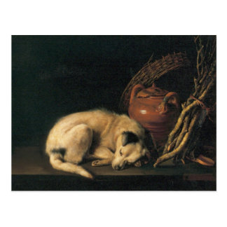 A Sleeping Dog with Terracotta Pot by Gerrit Dou Postcard