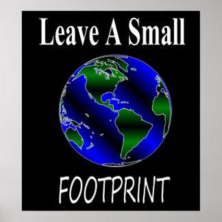 A Small Footprint Globe Print