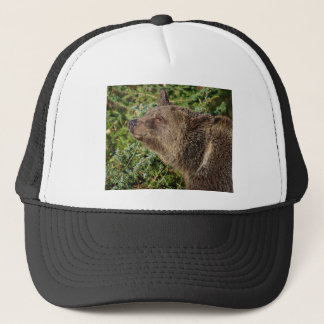 A Smiling Grizzly Bear Trucker Hat