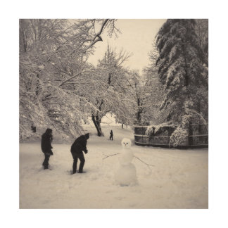 A Snowball Fight In Central Park Wood Wall Decor