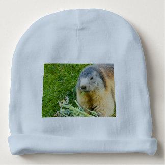 a sociable marmot on Baby Cotton Beanie Baby Beanie