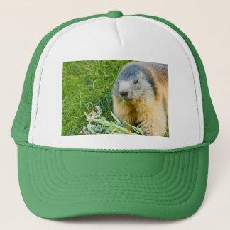 a sociable marmot on Trucker Hat