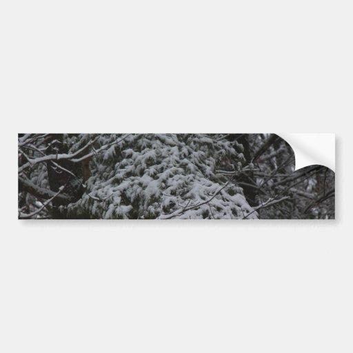 A Somber Scene Of Winter Bumper Stickers