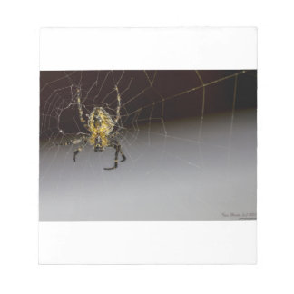 A Spider And His Web Up Close Notepad
