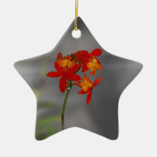 A Splash of Yellow-2020.JPG Ceramic Star Ornament