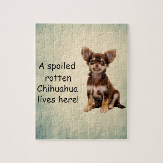 A Spoiled Rotten Chihuahua Dog Lives here Jigsaw Puzzle