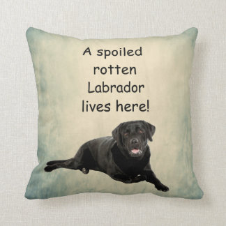 A Spoiled Rotten Labrador Lives Here Throw Pillow