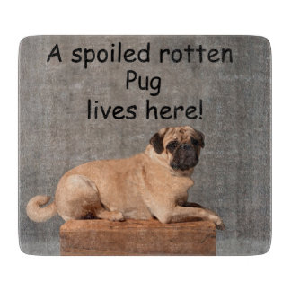 A Spoiled Rotten Pug Lives here Cutting Board