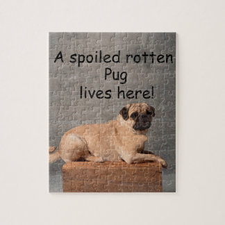 A Spoiled Rotten Pug Lives here Jigsaw Puzzle