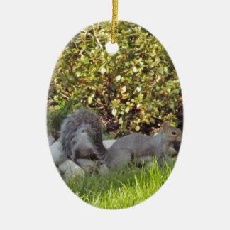 A Squirrel With A Nut In It's Mouth Ceramic Oval Ornament