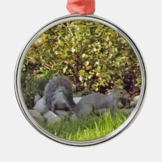 A Squirrel With A Nut In It's Mouth Silver-Colored Round Ornament