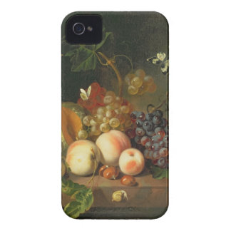 A Still Life on a Marble Ledge iPhone 4 Case