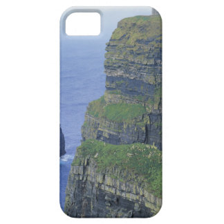a stone castle standing on top a steep cliff in case for the iPhone 5