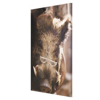 a stuffed wild boar wearing glasses outside a canvas prints