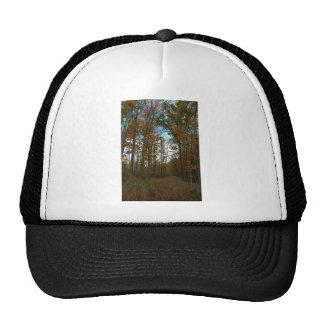A Sunday Walk Trucker Hat