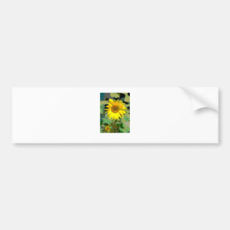 A sunflower bumper sticker