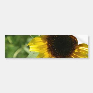 A sunflower bumper sticker