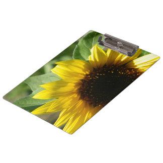 A Sunflower Clipboard