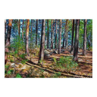 A Sunny afternoon in a pine forest Poster